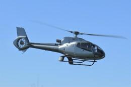 ヘリオスさんが、東京ヘリポートで撮影した日本法人所有 EC130B4の航空フォト(飛行機 写真・画像)