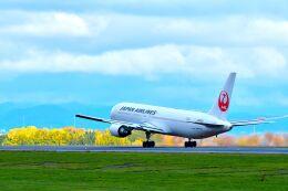 パンダさんが、旭川空港で撮影した日本航空 767-346/ERの航空フォト(飛行機 写真・画像)