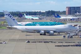 yabyanさんが、成田国際空港で撮影したアトラス航空 747-481F/SCDの航空フォト(飛行機 写真・画像)