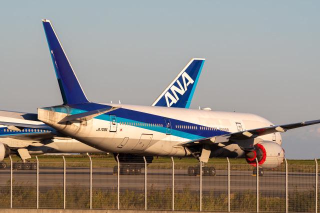 Tatsuya.Kさんが、羽田空港で撮影した全日空 777-281/ERの航空フォト(飛行機 写真・画像)