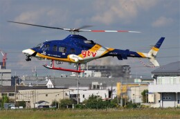 mild lifeさんが、八尾空港で撮影した中日本航空 430の航空フォト(飛行機 写真・画像)