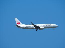 鷹71さんが、台湾桃園国際空港で撮影した日本航空 737-846の航空フォト(飛行機 写真・画像)