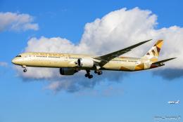pan_kumaさんが、成田国際空港で撮影したエティハド航空 787-10の航空フォト(飛行機 写真・画像)