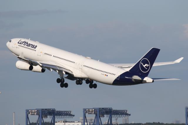 航空フォト:D-AIGY ルフトハンザドイツ航空 A340-300