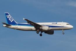 Deepさんが、成田国際空港で撮影した全日空 A320-211の航空フォト(飛行機 写真・画像)