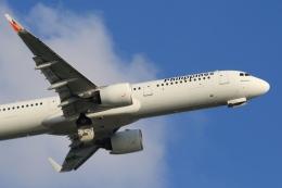 Hiro-hiroさんが、羽田空港で撮影したフィリピン航空 A321-271Nの航空フォト(飛行機 写真・画像)
