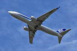 ワイエスさんが、鹿児島空港で撮影した全日空 737-8ALの航空フォト(飛行機 写真・画像)