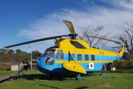 yabyanさんが、成田国際空港で撮影した海上保安庁 S-62Aの航空フォト(飛行機 写真・画像)