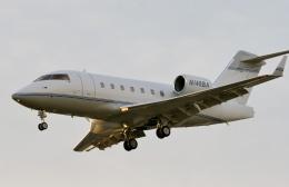 TA27さんが、ボーイングフィールドで撮影したunknown CL-600-2B16 Challenger 604の航空フォト(飛行機 写真・画像)