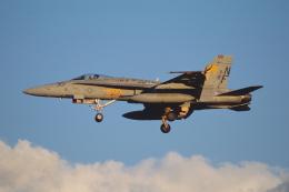 Night Owlさんが、厚木飛行場で撮影したアメリカ海軍 F/A-18C Hornetの航空フォト(飛行機 写真・画像)