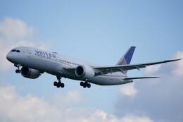 IMP.TIさんが、成田国際空港で撮影したユナイテッド航空 787-9の航空フォト(飛行機 写真・画像)