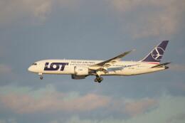 IMP.TIさんが、成田国際空港で撮影したLOTポーランド航空 787-8 Dreamlinerの航空フォト(飛行機 写真・画像)
