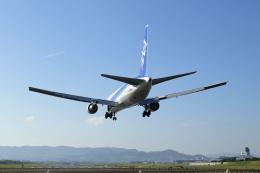 ▲®さんが、伊丹空港で撮影した全日空 767-381/ERの航空フォト(飛行機 写真・画像)