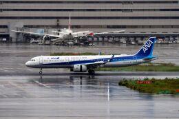 まいけるさんが、羽田空港で撮影した全日空 A321-272Nの航空フォト(飛行機 写真・画像)