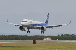 もえちゃんさんが、庄内空港で撮影した全日空 A321-272Nの航空フォト(飛行機 写真・画像)
