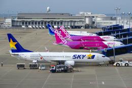 yabyanさんが、中部国際空港で撮影したピーチ A320-251Nの航空フォト(飛行機 写真・画像)