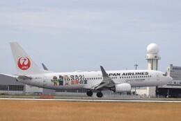 EosR2さんが、鹿児島空港で撮影した日本航空 737-846の航空フォト(飛行機 写真・画像)