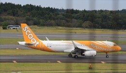 Rsaさんが、成田国際空港で撮影したスクート A320-232の航空フォト(飛行機 写真・画像)