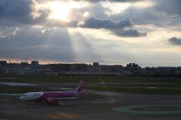 どんちんさんが、福岡空港で撮影したピーチ A320-251Nの航空フォト(飛行機 写真・画像)
