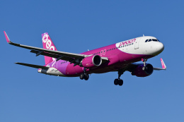 Frankspotterさんが、成田国際空港で撮影したピーチ A320-214の航空フォト(飛行機 写真・画像)