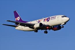 Frankspotterさんが、成田国際空港で撮影したYTOカーゴ・エアラインズ 737-37K(SF)の航空フォト(飛行機 写真・画像)