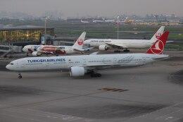 OS52さんが、羽田空港で撮影したターキッシュ・エアラインズ 777-3F2/ERの航空フォト(飛行機 写真・画像)