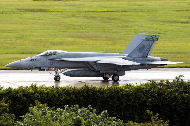 Flankerさんが、嘉手納飛行場で撮影したアメリカ海軍 F/A-18E Super Hornetの航空フォト(飛行機 写真・画像)