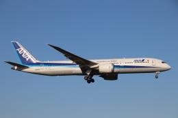 天王寺王子さんが、成田国際空港で撮影した全日空 787-9の航空フォト(飛行機 写真・画像)