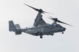 Koenig117さんが、嘉手納飛行場で撮影したアメリカ海軍 CMV-22Bの航空フォト(飛行機 写真・画像)