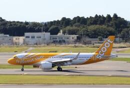 ハム太郎。さんが、成田国際空港で撮影したスクート A320-271Nの航空フォト(飛行機 写真・画像)