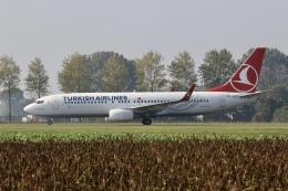 NIKEさんが、アムステルダム・スキポール国際空港で撮影したターキッシュ・エアラインズ 737-8F2の航空フォト(飛行機 写真・画像)