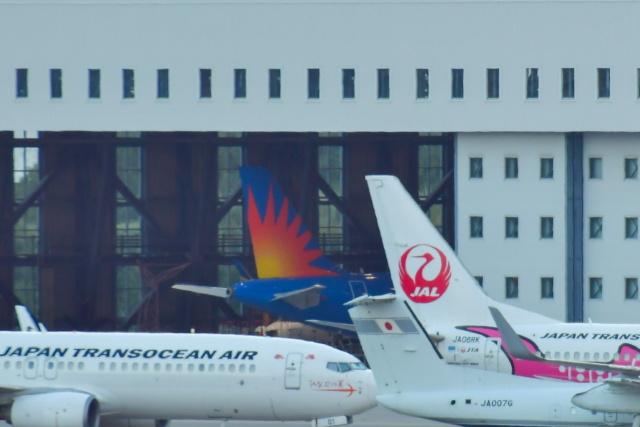 チョロ太さんが、那覇空港で撮影した全日空 A320-214の航空フォト(飛行機 写真・画像)