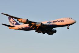 saoya_saodakeさんが、成田国際空港で撮影した日本貨物航空 747-8KZF/SCDの航空フォト(飛行機 写真・画像)