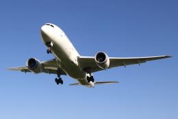 ▲®さんが、伊丹空港で撮影した日本航空 787-8 Dreamlinerの航空フォト(飛行機 写真・画像)