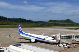 ▲®さんが、石垣空港で撮影した全日空 737-881の航空フォト(飛行機 写真・画像)