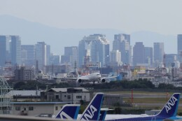 double_licenseさんが、伊丹空港で撮影した日本航空 A350-941の航空フォト(飛行機 写真・画像)