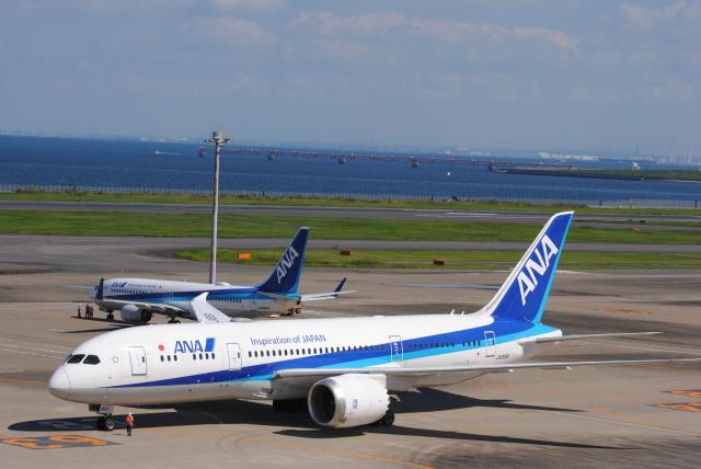 Kyoheiさんが、羽田空港で撮影した全日空 787-8 Dreamlinerの航空フォト(飛行機 写真・画像)