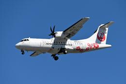 すしねこさんが、伊丹空港で撮影した天草エアライン ATR 42-600の航空フォト(飛行機 写真・画像)