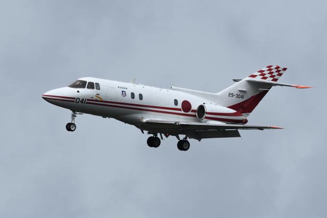 sepia2016さんが、茨城空港で撮影した航空自衛隊 U-125 (BAe-125-800FI)の航空フォト(飛行機 写真・画像)