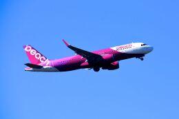 まいけるさんが、成田国際空港で撮影したピーチ A320-214の航空フォト(飛行機 写真・画像)
