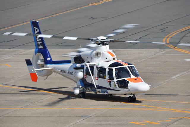 Cスマイルさんが、花巻空港で撮影したオールニッポンヘリコプター AS365N3 Dauphin 2の航空フォト(飛行機 写真・画像)