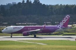 PIRORINGさんが、成田国際空港で撮影したピーチ A320-214の航空フォト(飛行機 写真・画像)