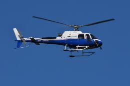 Cスマイルさんが、花巻空港で撮影した東京センチュリー AS350B3 Ecureuilの航空フォト(飛行機 写真・画像)