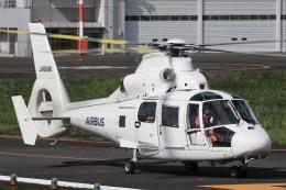 きりしまさんが、東京ヘリポートで撮影したエアバス・ヘリコプターズ・ジャパン AS365N2 Dauphin 2の航空フォト(飛行機 写真・画像)