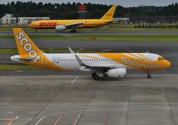 雲霧さんが、成田国際空港で撮影したスクート A320-232の航空フォト(飛行機 写真・画像)