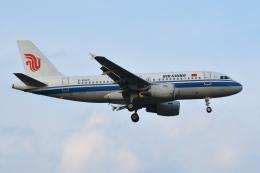 Deepさんが、成田国際空港で撮影した中国国際航空 A319-115の航空フォト(飛行機 写真・画像)
