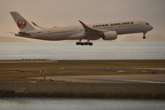 PIRORINGさんが、那覇空港で撮影した日本航空 A350-941の航空フォト(飛行機 写真・画像)