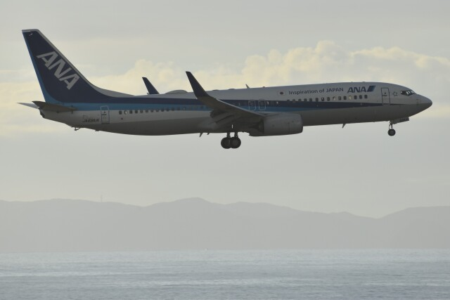 PIRORINGさんが、那覇空港で撮影した全日空 737-881の航空フォト(飛行機 写真・画像)