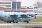 WING_ACEさんが、伊丹空港で撮影した航空自衛隊 C-130H Herculesの航空フォト(飛行機 写真・画像)