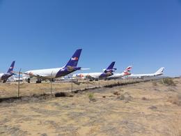 ZONOさんが、サザンカリフォルニアロジステクス空港で撮影したフェデックス・エクスプレス A310-221(F)の航空フォト(飛行機 写真・画像)